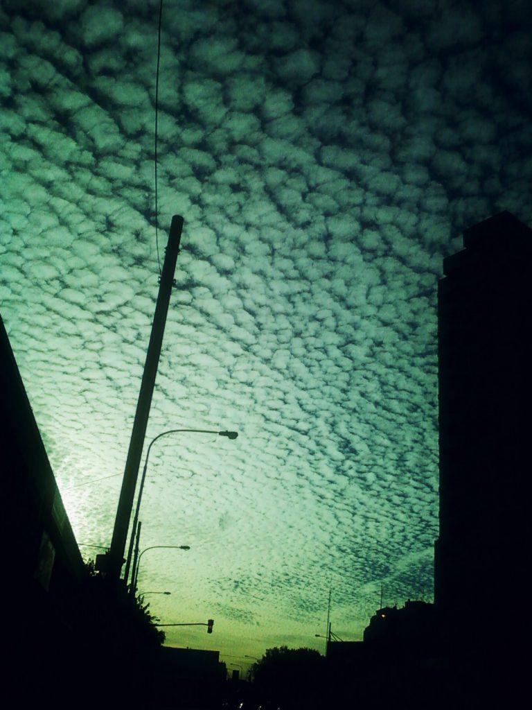 Foto-0311